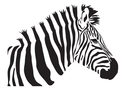 zebra outline silhouette Vector