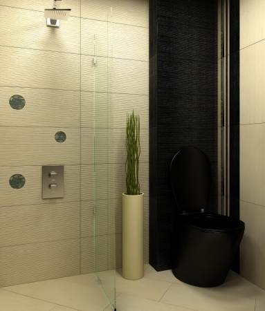 bathroom wc black design Stock Photo - 16170857