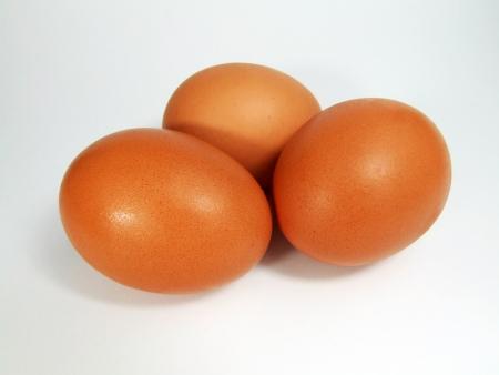 gallina con huevos: huevo