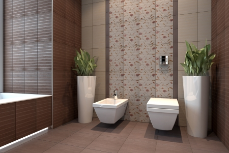 wc with bidet interior scene photo