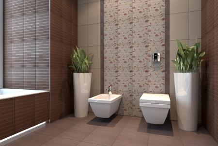 wc with bidet interior scene