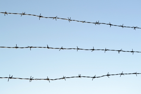 cattle wire: barbed wire fence with sky