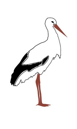 Vector stork silhouette on white background illustration.