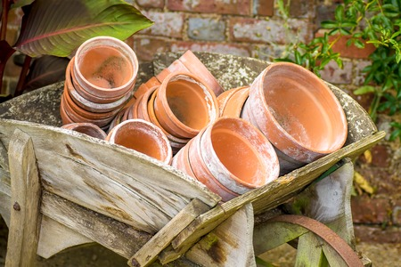terra cotta: Terra cotta plant pots in a wooden barrow. Stock Photo