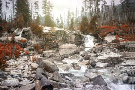 Autumn waterfall in the Tatra mountains, Slovakia Standard-Bild - 115908384