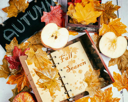 Autumn time. Fall theme with fallen leaves, notebook and apples.