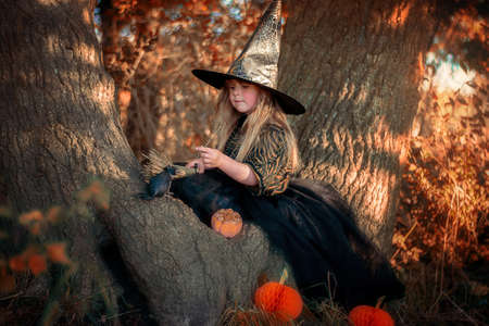 Little witch sitting on a tree in the forest