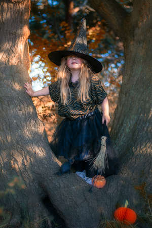 Little witch sitanding on a tree in the forest Stock Photo