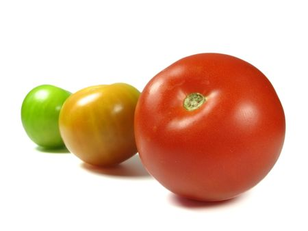 Growing tomatoes from green to red