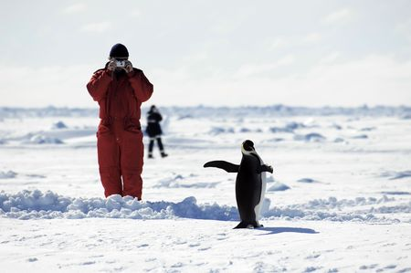 Man taking penguin pictures in Antarctica