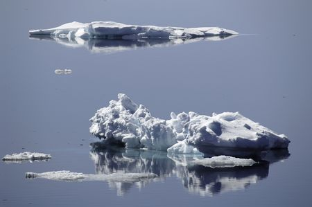 Ice floes reflecting in calm Antarctic waters Stock Photo - 3507367