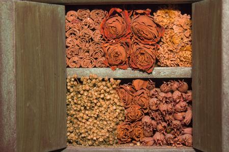 flores secas: Flores secas amontonadas Foto de archivo