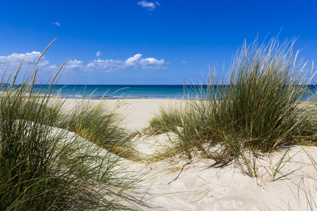 Salento Lecce: the sea, the beach and sand dunes Фото со стока - 57044252