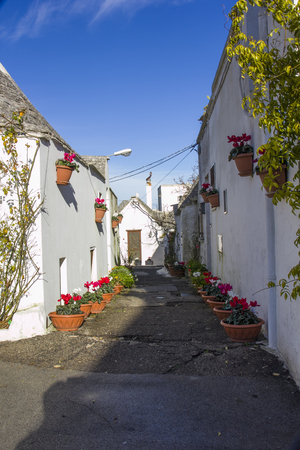 flourished: Road flourished in the ancient district of Alberobello.
