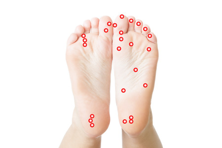 Massage of female feet. Acupressure. Pedicures. Isolated white background. photo