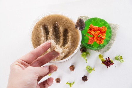 exfoliate: Scrub and soap on a woman hand. Cosmetics for skin care Stock Photo