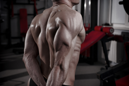 dorsi: Bodybuilder posing in gym. Perfect muscular male back. Toning image Stock Photo