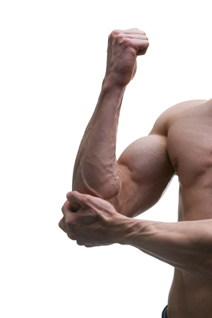 flexed: Muscular biceps close-up isolated on white background, strong arms Stock Photo