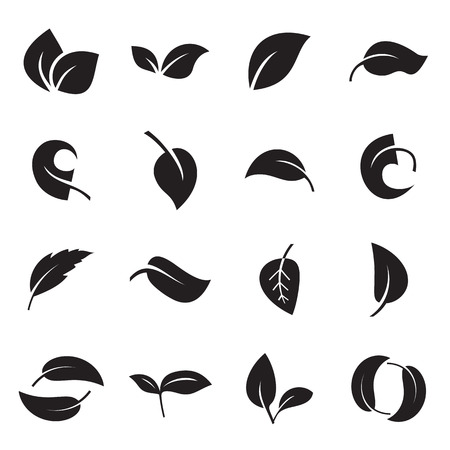 Icons of leaves islolated on a white background. Vector illustration Çizim