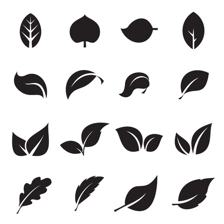 Collection of leaf icons. Black icons isolated on a white background. Vector illustration Ilustrace