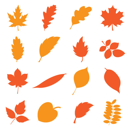 Collection of simple autumn leaves isolated on a white background. Vector illustration 向量圖像
