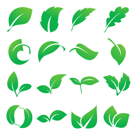 Leaf icons. Vector illustration