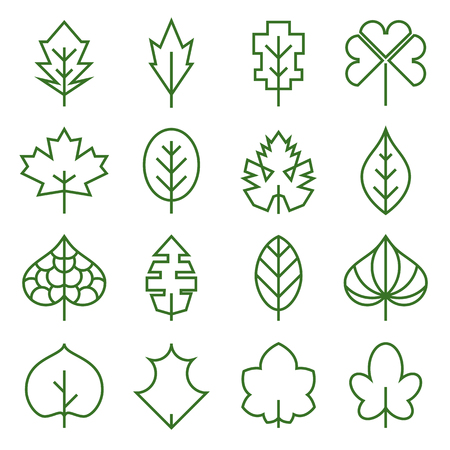 Leaf icons and collection of abstract of unusual symbols of leaves. Illustration