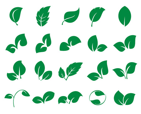 Green leaf iconss isolated on a white background