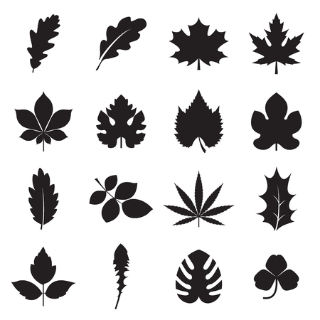Leaf icons vector illustration Ilustrace