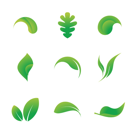 Collection of 9 leaf icons isolated on white background. 矢量图像