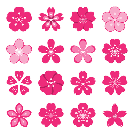 Sakura icons. Collection of 16 colored Ume Japanese cherry blossom symbols isolated on a white background. Vector illustration