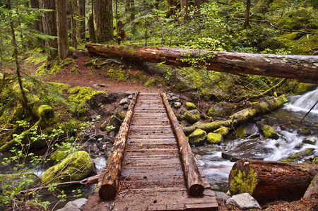 hiking trail: Closeup of wooden foot bridge on hiking trail in mountain over flowing river with mossy rocks Stock Photo