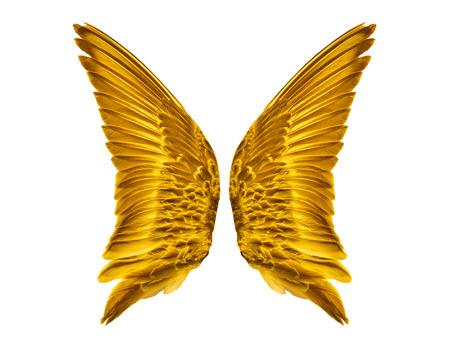 divinity: Pair of golden Bird Wings