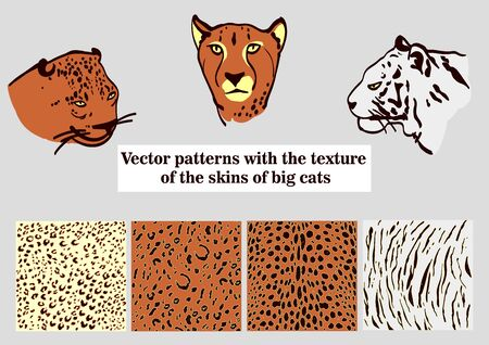 Vector pattern with big cats. Several sketches of the head of a leopard and a tiger.