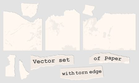Vector paper with torn edge. Pieces of notes. Illustration