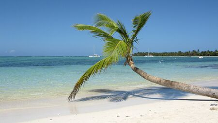 carribean: Dominican Republic paradise beach Stock Photo