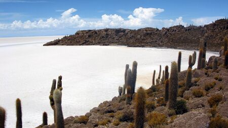 Salar de Uyuni,Bolivia photo