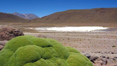 salar: Salar de Uyuni,Bolivia