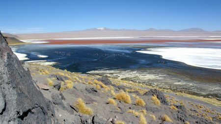 Lago Colorada,Salar de Uyuni,Bolivia Stock Photo - 12611860