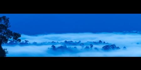 frans: Danum Valley panorama sunrise,Sabah - Borneo Stock Photo