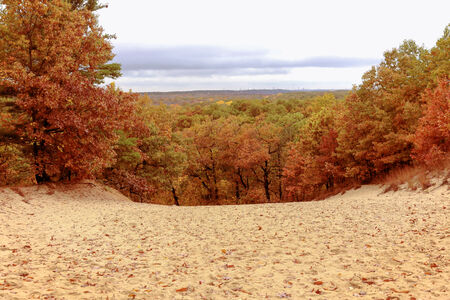 A panoramic view of fall colors from atop a sand dune near Lake Michigan Stock Photo