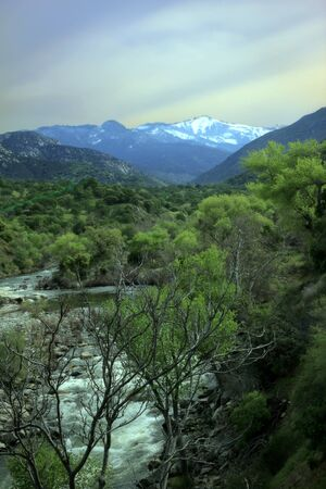 sierra snow: Water rushing from snow melting in the distant Sierra Nevada Mountains through the Kaweah River in Sequioa National Park, California