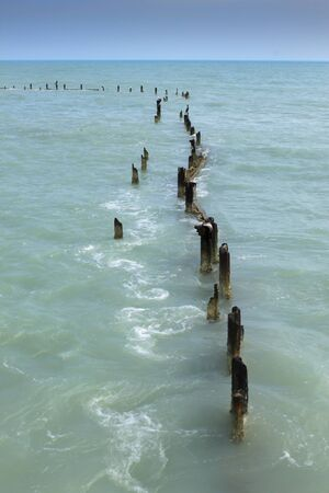 pilings: Birds perched atop old and rusted pier pilings in the Gulf of Mexico, near the Florida Keys