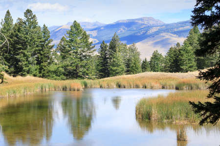 clear waters: Trees and mountains reflect in the clear waters of Beaver Pond on a trail through the Mammoth Hot Springs region of Yellowstone National Park Stock Photo