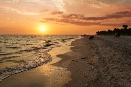 observance: Beach goers stand in observance of a colorful sunset on the beach of Sanibel island, Florida