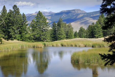 Trees and mountains reflect in the clear waters of Beaver Pond on a trail through the Mammoth Hot Springs region of Yellowstone National Park 写真素材