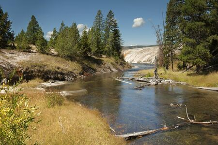 A picturesque creek meanders through Norris Geyser Basin in Yellowstone National Park, Wyoming 写真素材