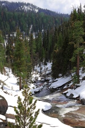 Snowy Clover Mountain Creek in late winter in Sequoia National Park, California