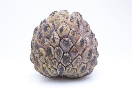 scaly custard apple: Close up view of a Sugar Apple Fruit isolated against white background.