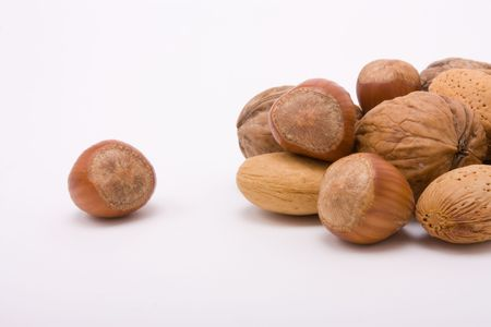 excluded: Festive Mixed Nuts of hazelnuts, walnuts and almonds isolated against white background with excluded hazelnut.